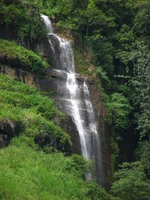 Sri Lanka waterfall by Anuradha Ratnaweera